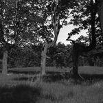 Greensky Hill church land